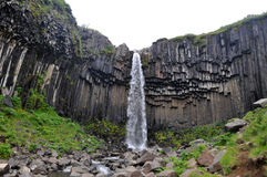 Svartifoss瀑布冰岛 库存照片