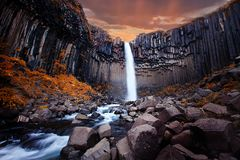Svartifoss瀑布在冰岛 免版税库存图片