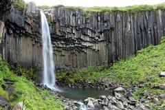 Svartifoss瀑布,冰岛 库存图片