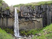 Svartifoss瀑布, Skaftafell国家公园,冰岛 免版税库存照片