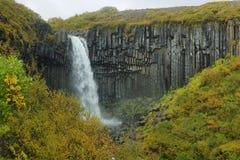 Svartifoss瀑布 图库摄影