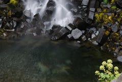 Svartifoss, Исландия Стоковые Фото