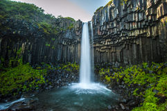Svartifoss, Black Waterfall, Iceland Royalty Free Stock Images