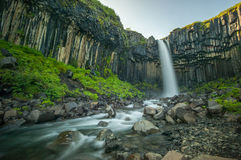 Svartifoss, Black Waterfall, Iceland Royalty Free Stock Photo