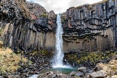 Svartifoss, cascada negra, Islandia Imágenes de archivo libres de regalías