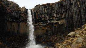 Svartifoss en Islandia 4K almacen de video