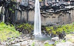 Svartifoss & x28; 黑Fall& x29; Skaftafell,冰岛 库存照片