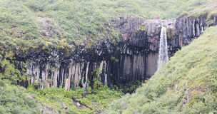 Svartifoss & x28; 黑Fall& x29; Skaftafell,冰岛 免版税库存图片