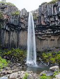 Svartifoss & x28; 黑Fall& x29; Skaftafell,冰岛 免版税库存照片
