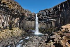 Svartifoss in IJsland met regenboog Royalty-vrije Stock Foto