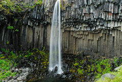 Svartifoss, Islanda Fotografia Stock Libera da Diritti