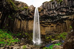 Svartifoss lava waterfall iceland Royalty Free Stock Image