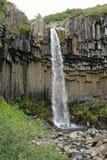 Svartifoss siklawa, Skaftafell park narodowy, Iceland Obrazy Royalty Free