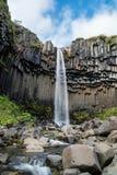 Svartifoss siklawa w południe Iceland fotografia royalty free