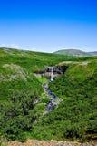 Svartifoss in Skaftafell Nationaal Park, IJsland. Royalty-vrije Stock Foto's