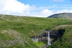 Svartifoss svart vattenfall, Skaftafell nationalpark, Island Arkivbilder