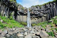 Svartifoss vattenfall i Island Royaltyfri Fotografi