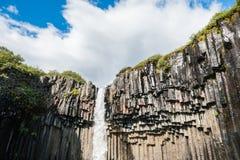 Svartifoss vattenfall med basaltkolonner Arkivfoto