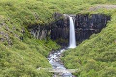 Svartifoss vattenfall på skaftafell royaltyfri foto