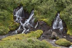 Svartifoss vattenfall Skaftafell royaltyfri bild