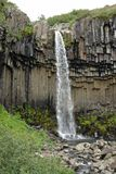 Svartifoss vattenfall, Skaftafell nationalpark, Island Royaltyfria Bilder