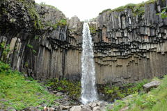 Svartifoss vattenfall, Skaftafell nationalpark, Island Fotografering för Bildbyråer