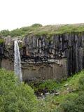 Svartifoss vattenfall, Skaftafell nationalpark, Island Royaltyfri Foto