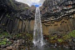 Svartifoss Wasserfall lizenzfreies stockfoto