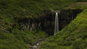 Svartifoss-Wasserfall in Skaftaftafell island lizenzfreie stockfotos