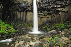 Svartifoss waterfall. And basalt columns Iceland Stock Photos