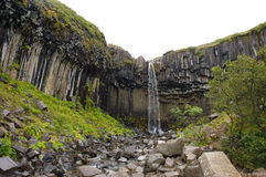 Svartifoss waterfall, Iceland. Royalty Free Stock Images