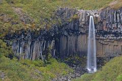 Free Svartifoss Waterfall, Iceland Royalty Free Stock Image - 14833526