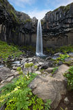 Svartifoss Waterfall, Iceland Stock Images