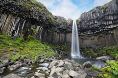 Svartifoss Waterfall, Iceland. Stock Photos