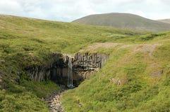 Svartifoss waterfall, Iceland Stock Image