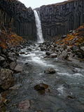 Svartifoss waterfall, Iceland Royalty Free Stock Photography