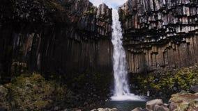 Svartifoss waterfall in Skaftafell National Park.  stock video