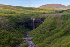 Svartifoss Waterfall, Skaftafell national park Royalty Free Stock Photography