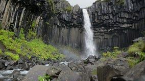 Svartifoss waterfall stock footage