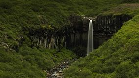 Svartifoss waterfall in Skaftaftafell. Iceland. royalty free stock photos