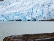 Svartisen glacier Royalty Free Stock Images
