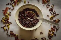 Svartpeppar med andra indiska kryddor royaltyfri foto