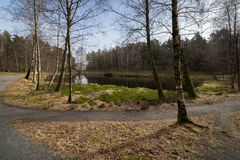 Svarttjern, a Frog and Toad pond in Baneheia in Kristiansand, Norway Stock Photos