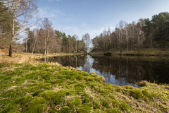 Svarttjern, a Frog and Toad pond in Baneheia in Kristiansand, Norway Stock Photo