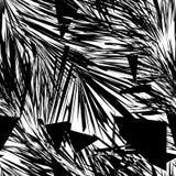 Svartvit abstrakt seamless modell Royaltyfria Bilder