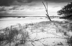 Svartvit Australien strandsoluppgång Fotografering för Bildbyråer