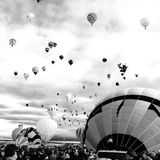 Svartvit BallonFiesta Royaltyfria Bilder