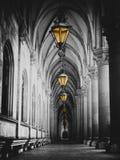 Svartvit bild av stadshuskorridoren med lyktor och pelare i den Wien rathausen Royaltyfri Foto