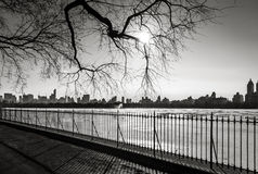 Svartvit cityscape i vintern - Manhattan horisont - nya Yo Arkivfoton