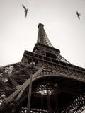 Svartvit Eiffeltorn i staden av Paris  Royaltyfria Bilder